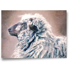 animals collection, high-quality art prints